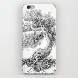 Juniper tree and the nightingale  iPhone Skin