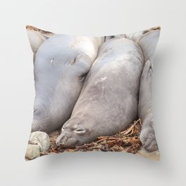 Sleeping Seals Throw Pillow