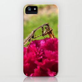 Praying Mantis Dining on a Moth iPhone Case