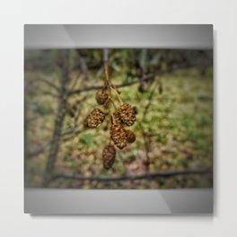Baum Pflanze 2 Metal Print