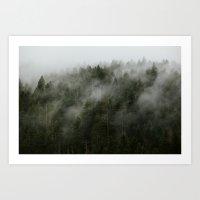 Pacific Northwest Foggy Forest Art Print