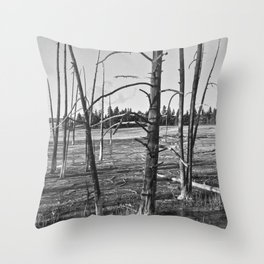 Life on the Caldera Throw Pillow
