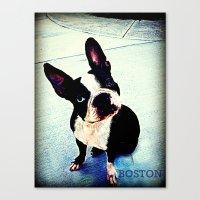 boston Canvas Prints featuring Boston by C Liza B