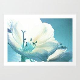 Beauty in Light Blue  Art Print