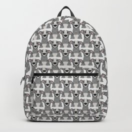 Blue and white Iggy Backpack
