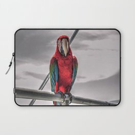 parrot Laptop Sleeve