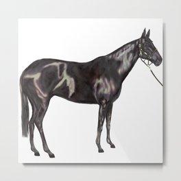 Black Horse Art Metal Print