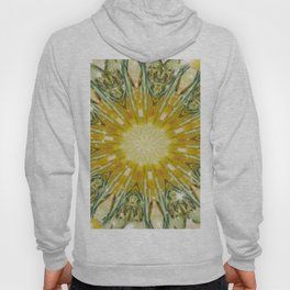Green and Yellow with Sparkles Kaleidoscope Mandala Retro Abstract Hoody