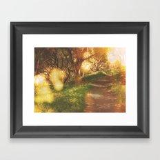 Oak Trail Framed Art Print