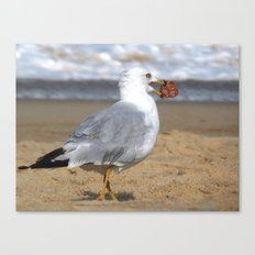 Finders Keepers Canvas Print