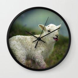 sweet little lamb Wall Clock
