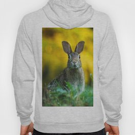 Rabbit | Lapin Hoody