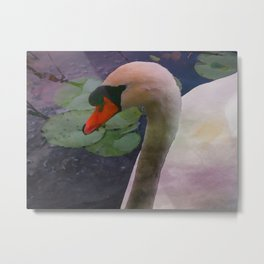 Mute Swan - Water Color Metal Print