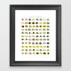 The Genus Chaetodon Framed Art Print