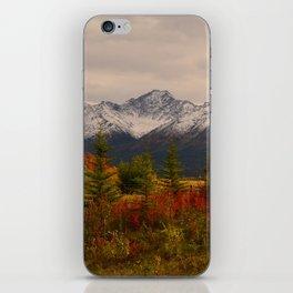 Seasons Turning iPhone Skin