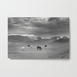 Horses in the Mountains Metal Print