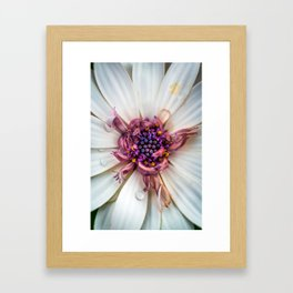 Waking up with a big smile and huge bedhead Framed Art Print