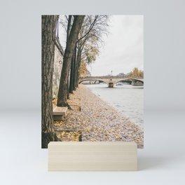 River Seine Autumn Leaves   Paris Travel Fine Art Mini Art Print