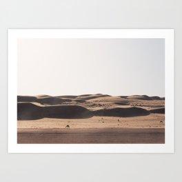 Camels in the Desert, Oman Art Print