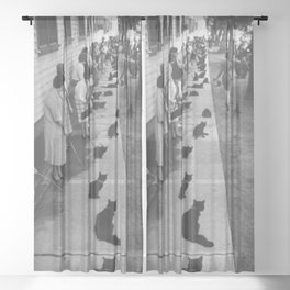 Black Cats Auditioning in Hollywood black and white photograph Sheer Curtain