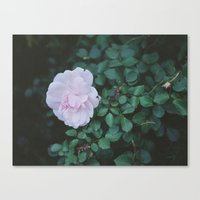 poetry Canvas Prints featuring poetry by karkova