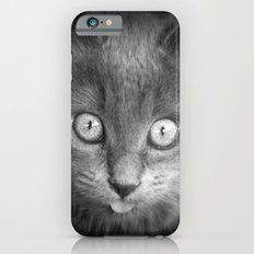 mystery cat iPhone 6s Slim Case