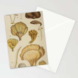 Naturalist Mushrooms Stationery Cards