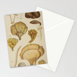 Naturalist Mushrooms Stationery Cards