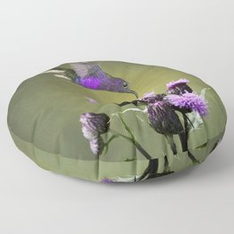 Violet Sabrewing Hummingbird and Thistle Floor Pillow