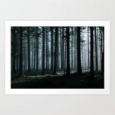 Mystery forest Art Print