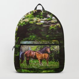Mother horse with little foal Backpack