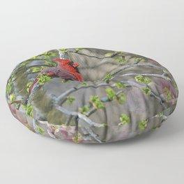 His Majesty the Cardinal Floor Pillow