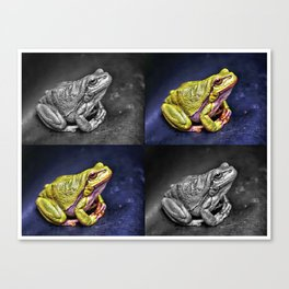 The InFocus Happy Frog Collection V Canvas Print