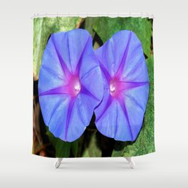Vivid Blue, Purple and Pink Ipomoea Flowers Shower Curtain