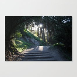 Land's End - Wild Veda Canvas Print
