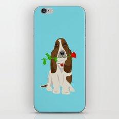 Basset Hound Dog in Love iPhone & iPod Skin