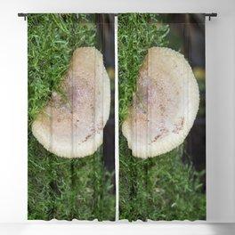 Woodland Fungus Blackout Curtain