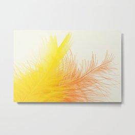 Bird Feathers Metal Print