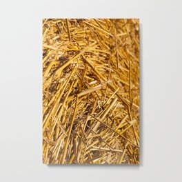 details of straw Metal Print