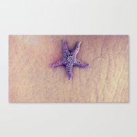 starfish Canvas Prints featuring Starfish by Taylor T
