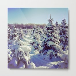 Snow in Syracuse, NY Metal Print