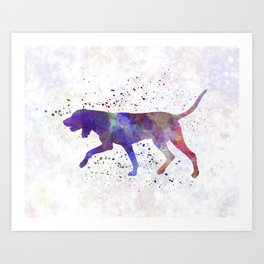 Black and Tan Coonhound in watercolor Art Print