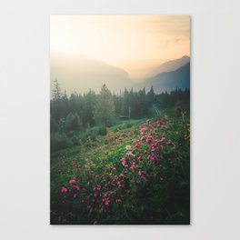 Flowers at Dawn Canvas Print