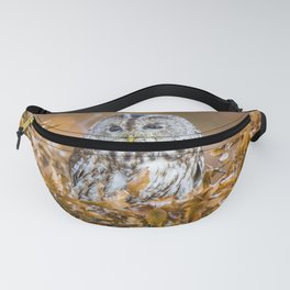Tawny Owl in woodland Fanny Pack