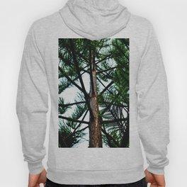 green pine tree Hoody