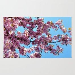 spring pink  blossoms Rug