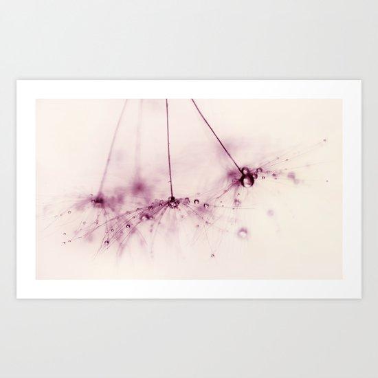 dandelion - pink blush Art Print