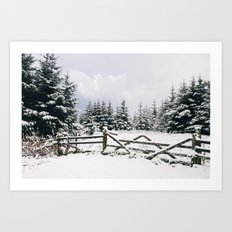 Gate and trees covered in heavy snow. Matterdale End, Cumbria, UK. Art Print