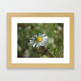You are Bugging Me Framed Art Print