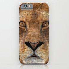 Male Lion iPhone 6s Slim Case